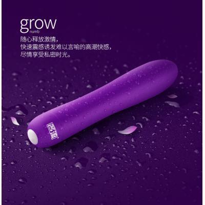名流七频唤醒高潮女用自慰器G点振动棒 紫色